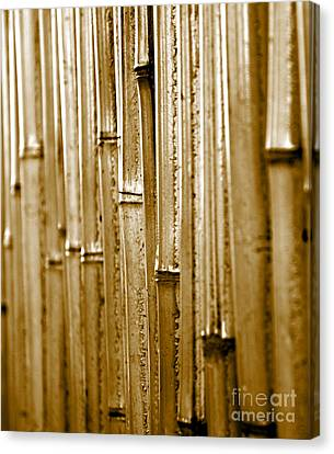 A Bamboo Wall Canvas Print by Sherry Hallemeier