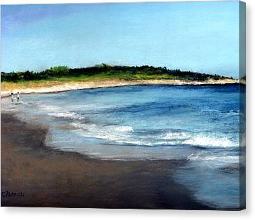 A Beach In Smithfield Canvas Print by Cindy Plutnicki