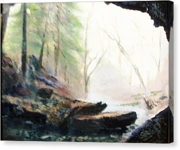 A Bears View Canvas Print by Gail Kirtz