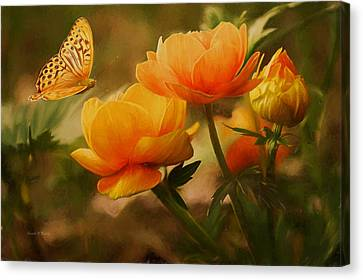 A Beautiful Morning  Canvas Print by Sandi OReilly