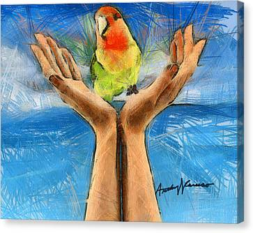 A Bird In Two Hands Canvas Print by Anthony Caruso