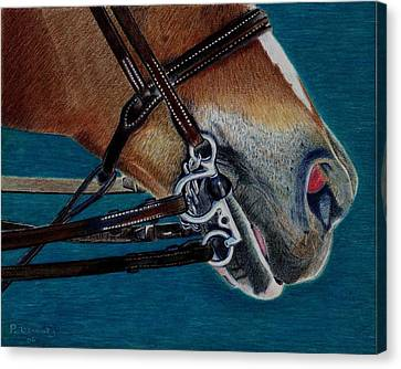 A Bit Of Control - Horse Bridle Painting Canvas Print by Patricia Barmatz