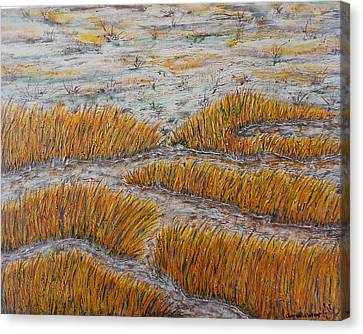 A Bit Of The Pagan River Marsh Canvas Print by Don Williams