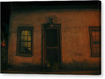 A Black Cat's Night Canvas Print by David Lee Thompson