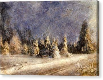 A Blizzard Of Light Canvas Print