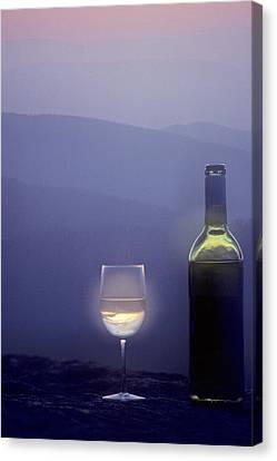 A Bottle Of Wine And Glass Canvas Print by Kenneth Garrett