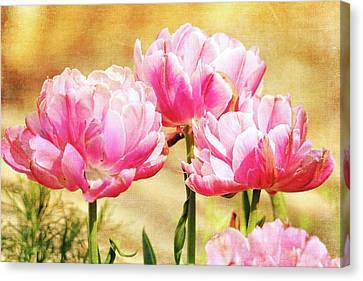 A Bouquet Of Tulips Canvas Print by Trina Ansel