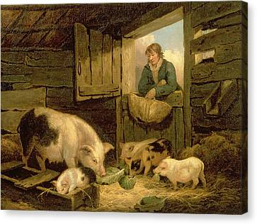 A Boy Looking Into A Pig Sty Canvas Print by George Morland