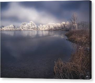 A Breath Of Frost Canvas Print by Michael Van Beber