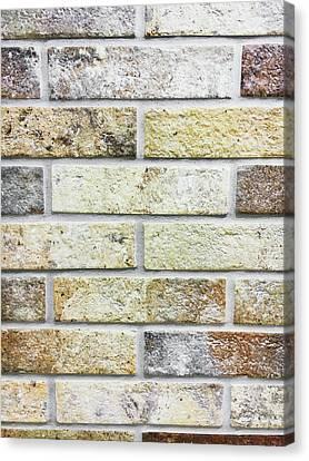 A Brick Wall Canvas Print by Tom Gowanlock