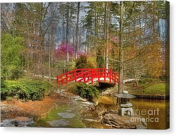 Tree Blossoms Canvas Print - A Bridge To Spring by Benanne Stiens