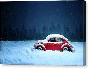 A Bug In The Snow Canvas Print