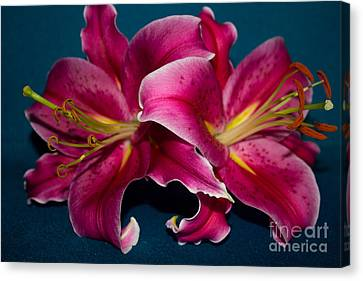 A Bunch Of Beauty Floral Canvas Print