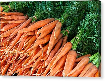 A Bunch Of Carrots Canvas Print by Todd Klassy