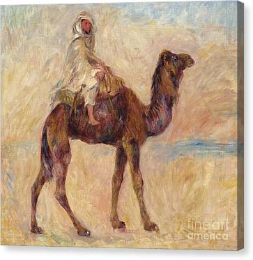 A Camel Canvas Print by Pierre Auguste Renoir