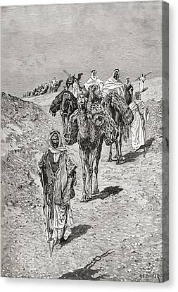 Camel Canvas Print - A Caravan, Africa In The Late 19th by Vintage Design Pics
