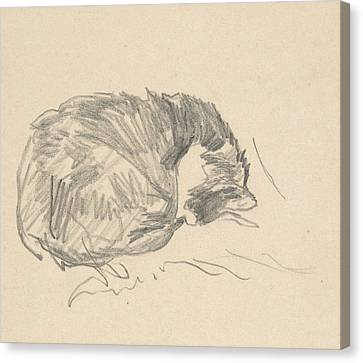 A Cat Curled Up, Sleeping Canvas Print by Edouard Manet