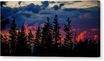 A Chance Of Thundershowers Canvas Print by Albert Seger