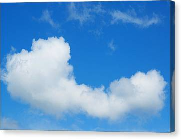 A Cloud For You Canvas Print by Gwyn Newcombe