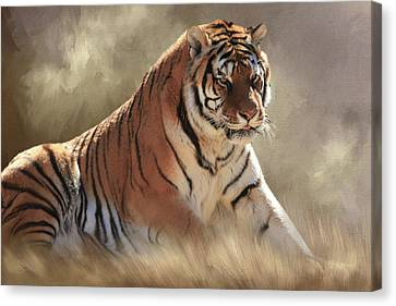 Tiger Canvas Print - A Coat Of Many Colors by Donna Kennedy