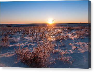 Canvas Print featuring the photograph A Cold December Morning by Monte Stevens