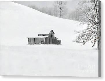 A Cold Winter's Day Canvas Print by Benanne Stiens