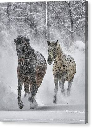 Canvas Print featuring the photograph A Cold Winter's Run by Wade Aiken