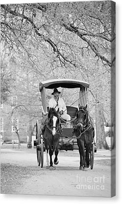 A Colonial Carriage In Black And White Canvas Print