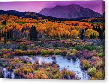 Canvas Print featuring the photograph A Colorado Fall Along Kebler Pass by John De Bord