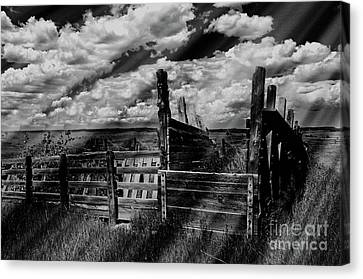 A Colorado Landscape In Black And White  Canvas Print by Liane Wright