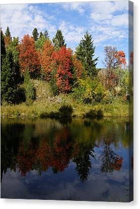 Canvas Print featuring the photograph A Colorful Reflection by DeeLon Merritt