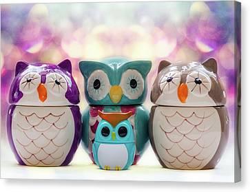 A Colourful Parliament Of Owls Canvas Print