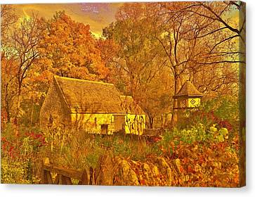 A Cotswald Fall  Canvas Print by Daniel Thompson