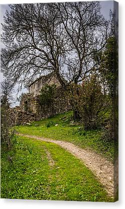 A Cottage In Ruins II Canvas Print by Marco Oliveira