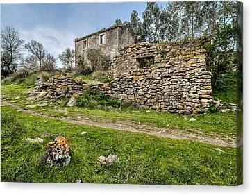 A Cottage In Ruins Canvas Print by Marco Oliveira