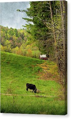 A Country Morning Canvas Print by Mike Eingle