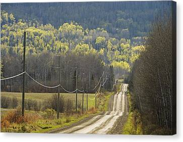 A Country Road With Electrical Wires Canvas Print by Susan Dykstra