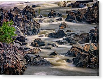 A Creek To The Side Canvas Print