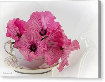 Country Magazine Decor Canvas Print - A Cup Of Pink Lavatera Flowers by Sandra Foster