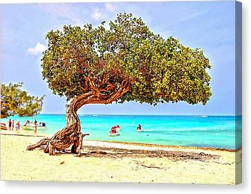 Canvas Print featuring the photograph A Day At Eagle Beach by DJ Florek