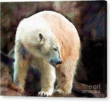 Pittsburgh Zoo Canvas Print - A Day At The Beach by Arne Hansen