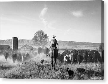A Day In A Rancher's Life Canvas Print