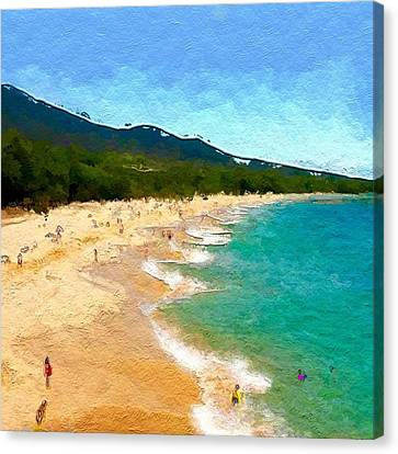 A Day In Paradise- Abstract  Canvas Print by Anthony Fishburne