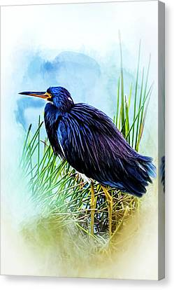 A Day In The Marsh Canvas Print by Cyndy Doty