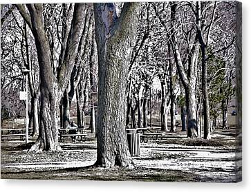 A Day In The Park Canvas Print by Reb Frost