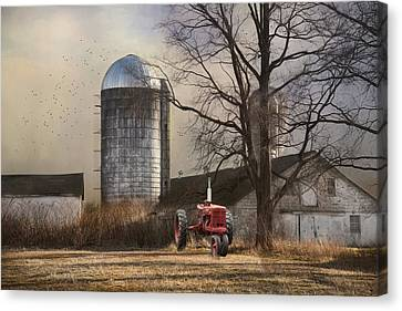 Canvas Print featuring the photograph A Day Off by Robin-Lee Vieira