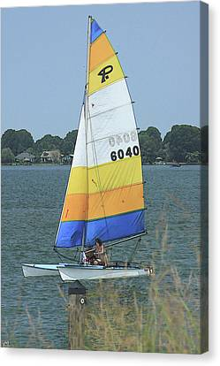 A Day To Sail Canvas Print by Karol Livote