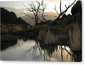 Canvas Print featuring the photograph A Days End by Lori Mellen-Pagliaro