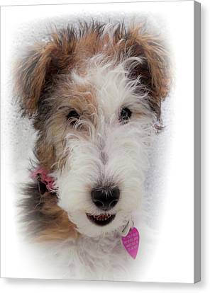Fox Terrier Canvas Print - A Dog Named Butterfly by Karen Wiles