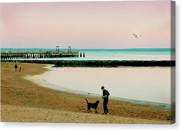 A Dog's Day Canvas Print by Diana Angstadt
